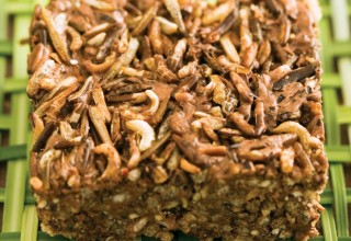 puffed wild rice square
